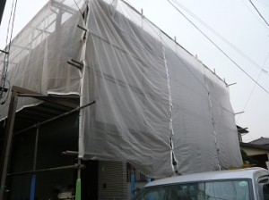 P1190701